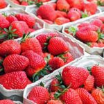 Jordbær - fyldt med c-vitaminer