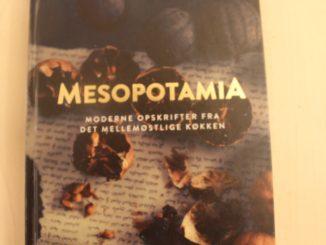 Mesopotamia - Moderne opskrifter fra det mellemøstlige køkken