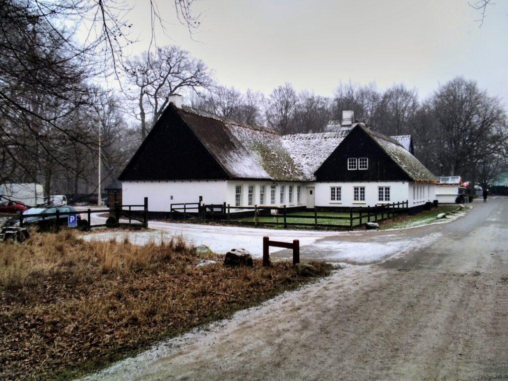 Dyrehaven om vinteren