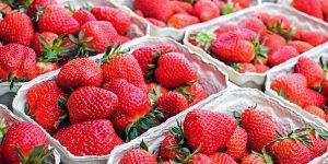 Jordbær - hører til den danske sommer